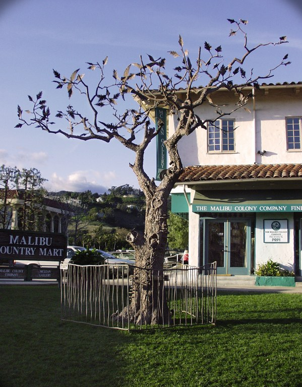 Metal tree sculpture in Malibu, CA by Pavlovs Dream